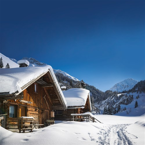 Not long now until the first snow falls - let us know NOW your availability for the upcoming ski season