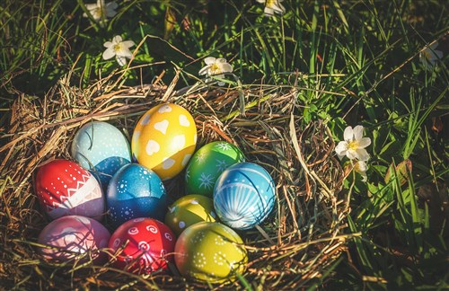How to organise an Easter Egg Hunt